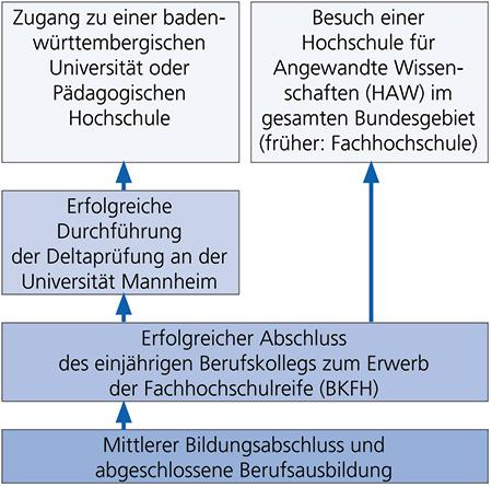 Bildungsweg BKFH